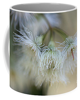 Hush Coffee Mug