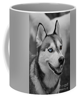 Coffee Mug featuring the photograph Husky Portrait by Vicki Spindler