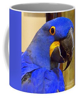 Hyacinth Macaw Portrait Coffee Mug