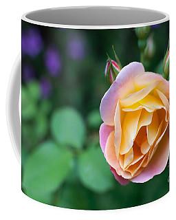 Coffee Mug featuring the photograph Hybrid Tea Rose by Matt Malloy