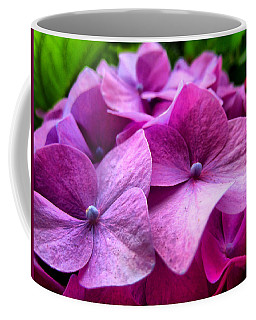 Hydrangea Bliss Coffee Mug
