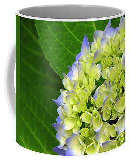 Happy Hydrangea Coffee Mug