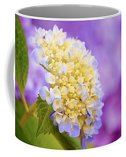 Hydrangea On Purple Coffee Mug