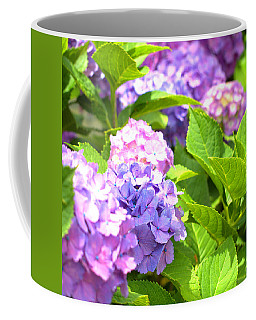 Coffee Mug featuring the photograph Hydrangeas In The Sun by Rachel Mirror