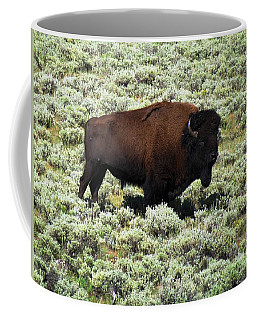 I Am The King Of This Meadow Coffee Mug by Ausra Huntington nee Paulauskaite