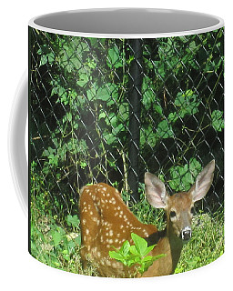 I Can Hear You Coffee Mug