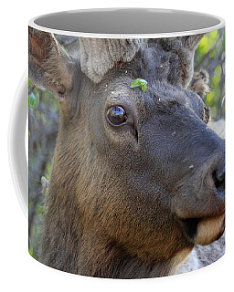 I Have What On My Face? Coffee Mug