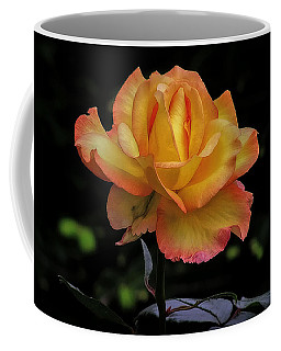 Coffee Mug featuring the photograph I Know I'm Beautiful by Hanny Heim