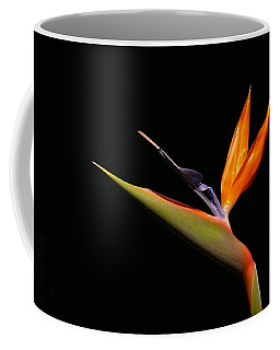 Coffee Mug featuring the photograph I Love You Too by Evelyn Tambour