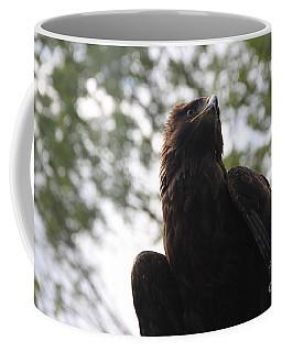 I See.... Coffee Mug