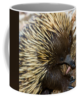 Coffee Mug featuring the photograph I See Some Ants by Miroslava Jurcik