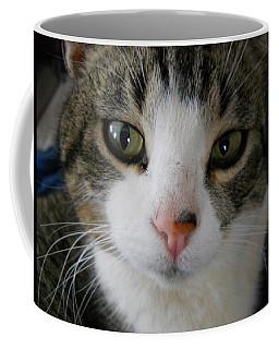 I See You Cat Coffee Mug by Kent Lorentzen