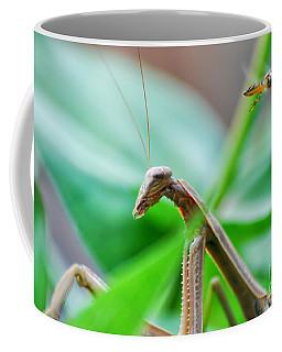 Coffee Mug featuring the photograph I See You by Thomas Woolworth