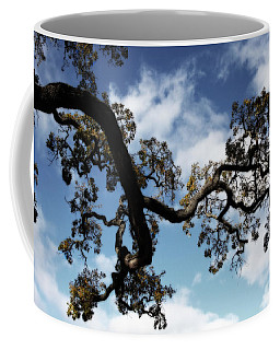 I Touch The Sky Coffee Mug by Laurie Search