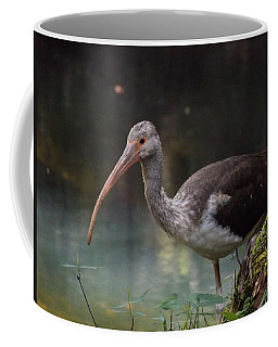 Ibis Cute Face Coffee Mug