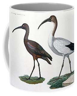 Ibises Coffee Mug