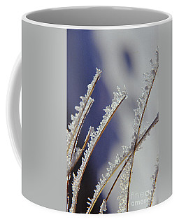 Coffee Mug featuring the photograph Ice Crystals On Fireweed Fairbanks  Alaska By Pat Hathaway 1969 by California Views Mr Pat Hathaway Archives
