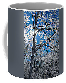 Ice Crystals On The Branches Coffee Mug