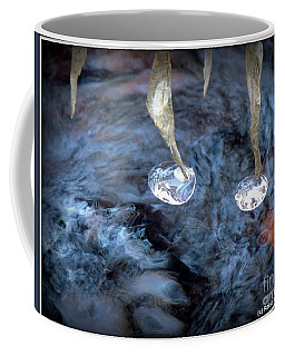 Ice Images Coffee Mug