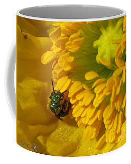Coffee Mug featuring the photograph Iceland Poppy Pollination by J McCombie
