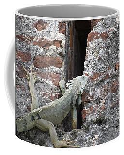 Coffee Mug featuring the photograph Iguana by David S Reynolds