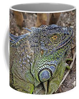 Coffee Mug featuring the photograph Iguana by Olga Hamilton