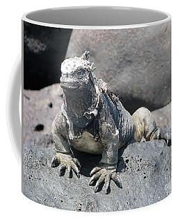 Iguana Or Prehistory Survivor Coffee Mug