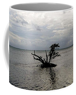 Ikebana Sunset Coffee Mug