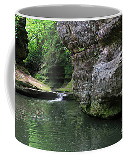 Illinois Canyon May 2014 Coffee Mug