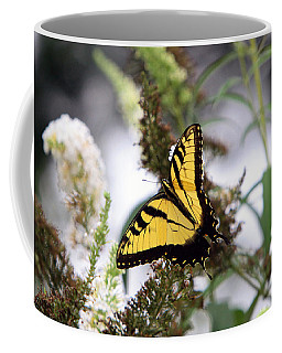 Coffee Mug featuring the photograph Illuminating by John Freidenberg