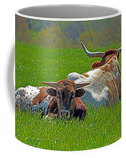 Coffee Mug featuring the photograph I'm Just A Baby by Lynn Sprowl