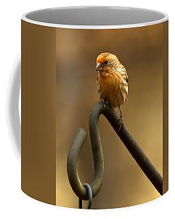 I'm Orange Coffee Mug