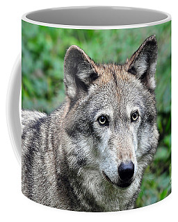 I'm So Misunderstood Coffee Mug