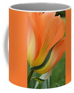 Imperfect Beauty Coffee Mug by Felicia Tica