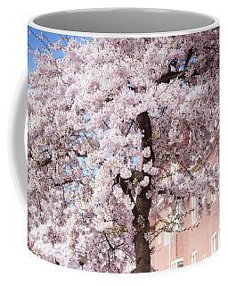 In Its Glory. Pink Spring In Amsterdam Coffee Mug