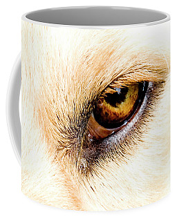 Coffee Mug featuring the photograph In The Eyes.... by Rod Wiens