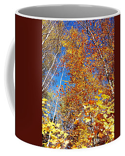 In The Forest At Fall Coffee Mug