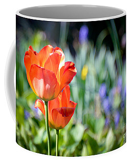 Coffee Mug featuring the photograph In The Garden by Kerri Farley
