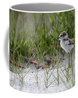 In The Grass - Wilson's Plover Chick Coffee Mug