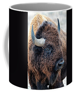 In The Presence Of  Bison - Yes Paint Him Coffee Mug