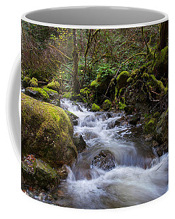 In The Rainforest Coffee Mug
