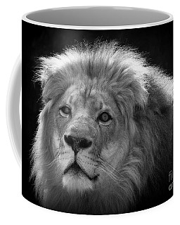 Coffee Mug featuring the photograph In The Shadows 3 by Lisa L Silva