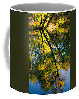 Incredible Colors Coffee Mug by Parker Cunningham
