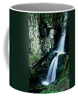 Indian Falls Coffee Mug