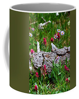 Coffee Mug featuring the photograph Indian Paintbrush by Ronda Kimbrow