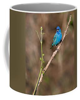 Indigo Bunting Portrait Coffee Mug