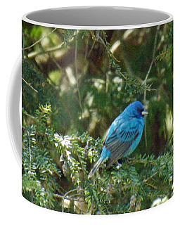 Indigo Bunting Visit Coffee Mug