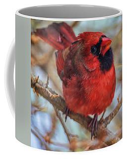 Inquisitive Cardinal Coffee Mug