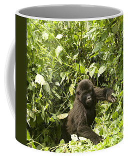 Coffee Mug featuring the photograph Into The Light by Liz Leyden