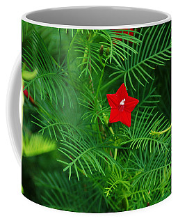 Ipomoea Quamoclit Coffee Mug